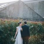 Les mariés sous l'Olivier